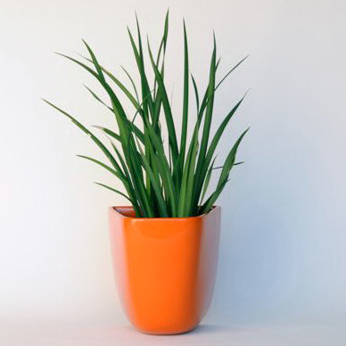 VesseL Architectural Pottery DL Domino Wall Planter/Container modern-outdoor-pots-and-planters