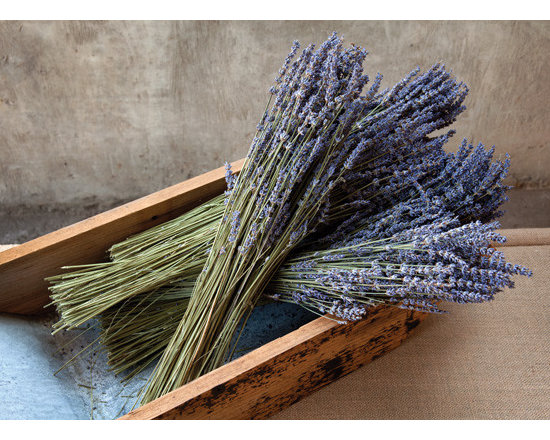 Dried Lavender Bunch -