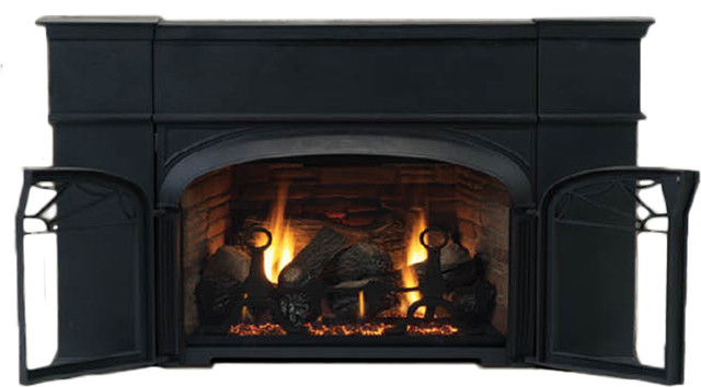 Vermont Castings VLI31DVNTSC Augusta 31 Direct Vent Natural Gas Insert Fireplace modern-indoor-fireplaces