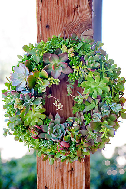 Succulent Wreath Or Centerpiece By SucculentDESIGNS eclectic holiday outdoor decorations