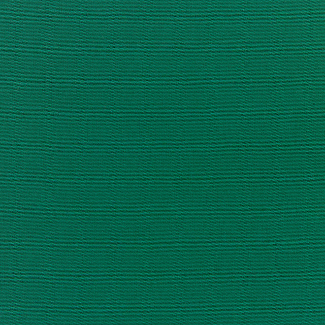 5446 Sunbrella Forest Green Fabric traditional-outdoor-fabric
