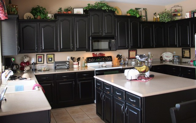 Black Kitchen Cabinets Houzz Nrtradiantcom
